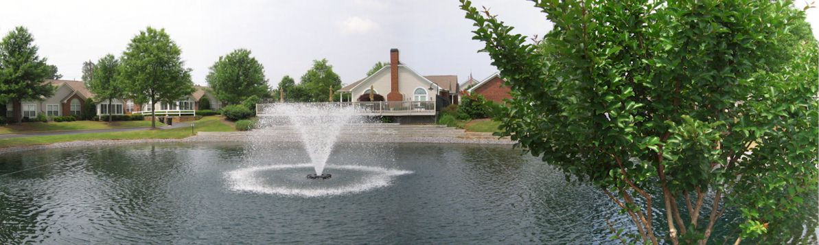 View From Lower Pond